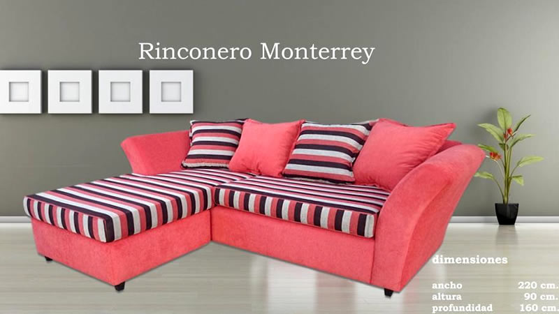 Rinconero Monterrey